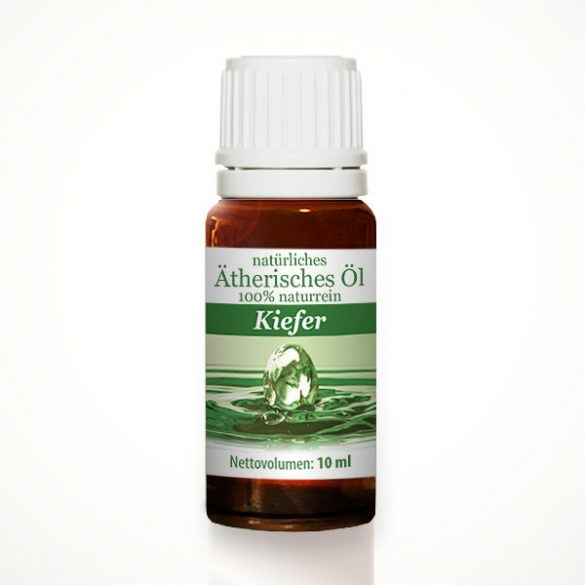 Pine needle - natural 100% pure essential oil 10 ml